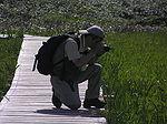 雨竜沼カメラマンP7020099.JPG