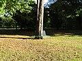 -2018-10-18 Tree and bench Paston churchyard, Paston, Norfolk.JPG