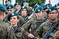 02017 0073 Karpatenvorland-WOT-Brigade.jpg