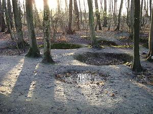 Sanctuary Wood Museum Hill 62 - Image: 025 Hill 62 Holes, Belgium