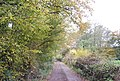 1066 Country Walk along the edge of Powdermills Wood - geograph.org.uk - 2187760.jpg