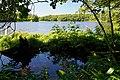 140829 Yonko of Shiretoko Goko Lakes Hokkaido Japan03n.jpg