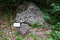 180727 Nasu Heisei-no-mori Forest Nasu Japan10.JPG
