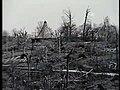 1974 Tornado.jpg