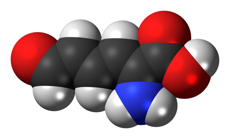 File:2-Aminomuconic-semialdehyde-3D-spacefill.png