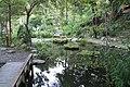 2010 07 17270 5840 Beinan Township, Taiwan, Jhihben National Forest Recreation Area, Walking paths, Ponds.JPG