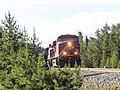 20130627 03 CP Railway, Lake Louise (11371867704).jpg