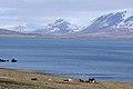 2014-04-29 09-22-37 Iceland - Akureyri Svalbarðseyri.JPG