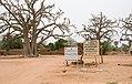 2015.04-428-443ap baobab or kapok(Bombacaceae),sign(Cooperative ' ' Bengkadi' ' de Dougouniona) Nintabougoro vlge(Nafanga Cmn.,Koutiala Crc.,Sikasso Rgn),ML fri24apr2015-1043h.jpg
