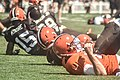 2016 Cleveland Browns Training Camp (28614628391).jpg