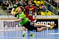 20180209 HLA Westwien vs. UHK Krems Jelinek Feichtinger 850 3752.jpg