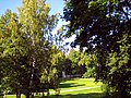 2078. Peterhof. Alexandria Park.jpg