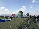 22nd FAI World Hot Air Balloon Championship 20161103-9.jpg