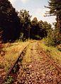 285 railway line in Poland Zagorze Slaskie (2).jpg