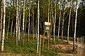 4299 Ивьевский лесхоз.jpg
