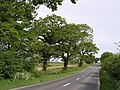 A386 on Langabeare Moor - geograph.org.uk - 438813.jpg