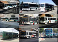 ACTransit collage.jpg