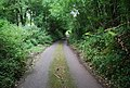 A quiet Kentish byway - geograph.org.uk - 940930.jpg