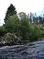 A small island in River Shin - geograph.org.uk - 564672.jpg