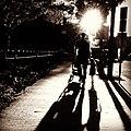A walk observed - Flickr - Lorie Shaull.jpg