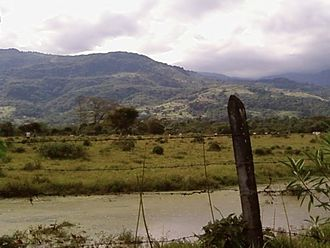 Guayupe - Landscape in Acacías, terrain of the Guayupe