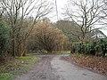 Access road running from St Bartholomew, Egdean - geograph.org.uk - 1762375.jpg