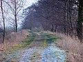Achterkade Lopikerwaard 23-02-2003 - panoramio.jpg