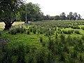 Across the Fields - geograph.org.uk - 884476.jpg