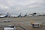 Alaska Airlines planes at Sea-Tac.jpg