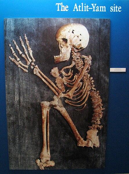 File:Alit-Yam – Human skeleton.JPG