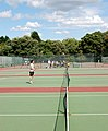 Along the nets, Regents Park tennis courts - geograph.org.uk - 1426003.jpg