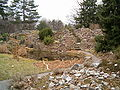 Alpinum BotGardDresden070219.jpg