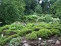 Alter Botanischer Garten der Universität Göttingen 005.jpg