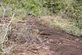 Alto Araguaia - State of Mato Grosso, Brazil - panoramio (1165).jpg