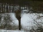 Anglerteich im Winter.jpg