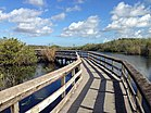 Anhinga Trail boardwalk.JPG