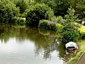 Annandale Water - geograph.org.uk - 1420067.jpg