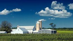 Another Farm Rockland Township.jpg