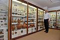 Antiquities Museum (6495926249).jpg