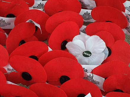 A white remembrance poppy left on Anzac Day in New Zealand, 2009 Anzac poppies.JPG