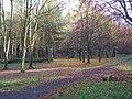 Arborétum à l'automne.JPG