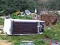 Argos graveyard - geograph.org.uk - 308114.jpg