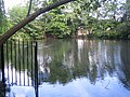 Ascot, Blackmoor Pond - geograph.org.uk - 475204.jpg