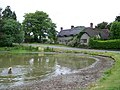 Ashmore Pond - geograph.org.uk - 1347613.jpg