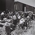 Atlit camp 1945.jpg