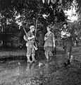 Australian wounded around Oivi November 1942 (AWM image 013621).jpg