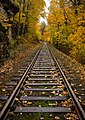 Autumn Rails (55090316).jpeg