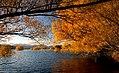 Autumn at Lake Tekapo NZ (9566743254).jpg