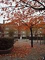 Autumn in Amsterdam (red) (4511794214).jpg