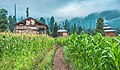 Azad Kashmir - Neelum Valley.jpg